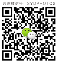 SYDPHOTOS Consultant WechatID Scan Code